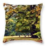Landscape Under A Big Oak In Autumn Throw Pillow