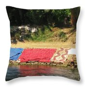 Laundry Matt On The Nile Throw Pillow
