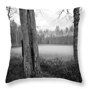 Liesilampi 3 Throw Pillow