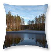 Liesilampi 5 Throw Pillow
