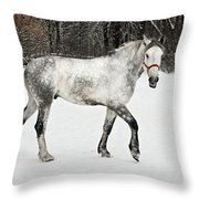 Light  Grey Horse Goes On A Winter Glade  Throw Pillow