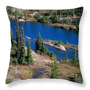 Lila Lake Throw Pillow