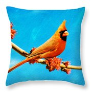 Male Northern Cardinal Perched On Tree Branch Throw Pillow