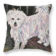 Maltese Terrier Mix In Living Color Throw Pillow