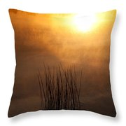 Mist And Lake Reeds At Sunrise Throw Pillow