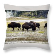 North American Female Buffalo And Her Offspring Showing Affecti Throw Pillow