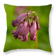 Pacific Bleeding Heart 1 Throw Pillow