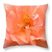 Peachy Perfection Throw Pillow