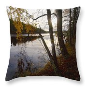 Pitkajarvi Throw Pillow