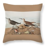 Red Backed Sandpiper Throw Pillow