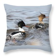 Red-breasted-merganser-ducks Throw Pillow