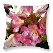 Rhododendron In Pink  Throw Pillow