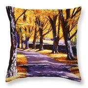 Road Of Golden Beauty Throw Pillow