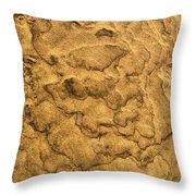 Sand Map Throw Pillow