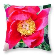 Scott' Flower2 Throw Pillow