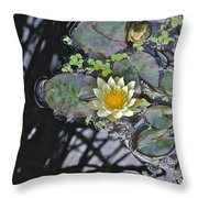 September White Water Lily Throw Pillow
