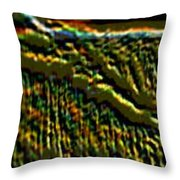 South Rim- N -green Grandeur Throw Pillow