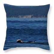Southern Resident Orcas And Salmon Off The San Juan Islands Playing With Salmon Throw Pillow