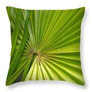Spiny Fiber Palm Throw Pillow