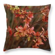 Spirea 1280 Throw Pillow
