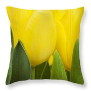 Spring Yellow Tulips Throw Pillow