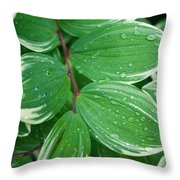 Tears Of Solomons Throw Pillow