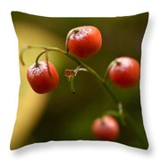 The Berries Of The Lily Of The Valley Throw Pillow