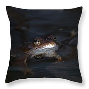 The Common Frog 1 Throw Pillow