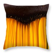 The Curtains Throw Pillow
