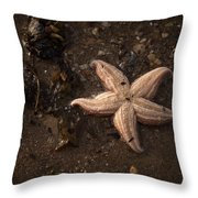 Vanishing Star Throw Pillow