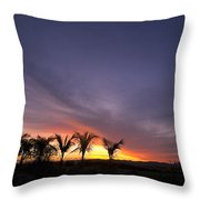 ... W Palmach Throw Pillow