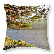 Warmth  Of The Pine Branch. Throw Pillow