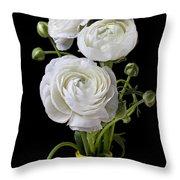 White Ranunculus In Yellow Vase Throw Pillow