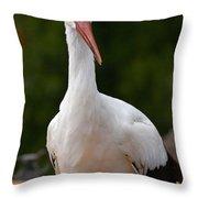 White Stork 4 Throw Pillow