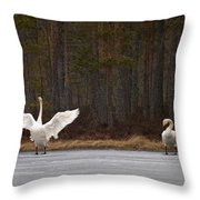 Whooper Swans 2 Throw Pillow