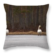 Whooper Swans Throw Pillow