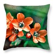 Wildflowers 5 -  Polemonium Reptans  - Digital Paint 3 Throw Pillow