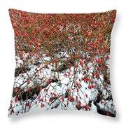 Winter Harvest 2 Throw Pillow