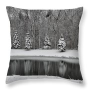 Winter Reflections Throw Pillow