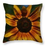 Yellow Sun Flower Throw Pillow