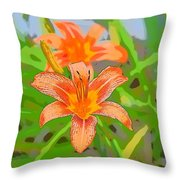 0009 Throw Pillow