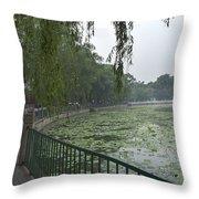0038-2- Beihai Park Throw Pillow