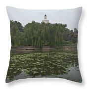 0043-2-white Dagoba Throw Pillow