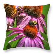 01 Bee And Echinacea Throw Pillow