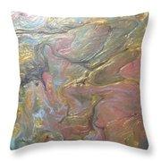 01112017c50 Throw Pillow by Sonya Wilson
