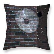 0112- Web Throw Pillow