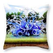 01142017061 Throw Pillow