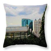 01142017065 Throw Pillow