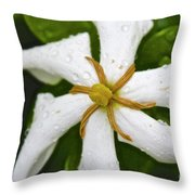 01142017067 Throw Pillow