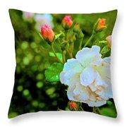 01142017080 Throw Pillow